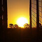 Sheep Pen Sunset by PishPosh