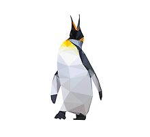 Geometric Penguin (1) by VitaSun