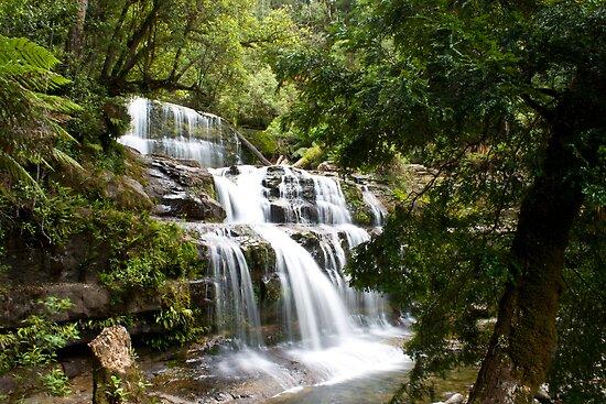 Liffey Falls by Gethin