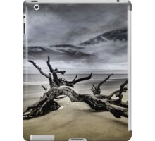 Desolate Beach iPad Case/Skin