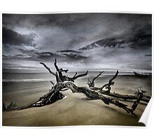 Desolate Beach Poster