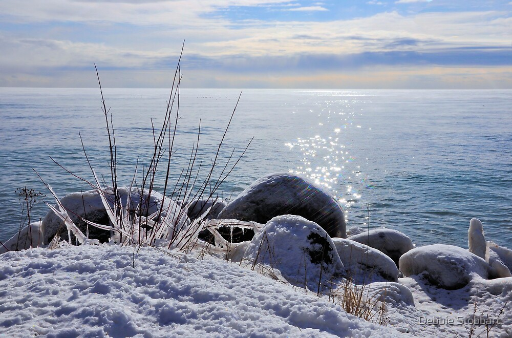Snow by the Lake by Debbie Stobbart