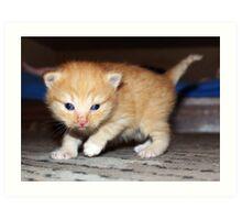 Small cat:)) Art Print