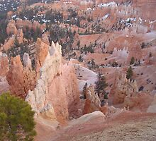 Bryce Canyon by Michelle McDonald