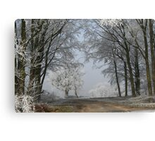 A cold snap Canvas Print
