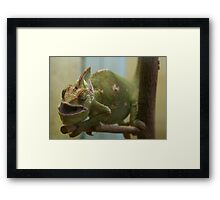 Hungry Reptile Framed Print