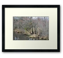 Blackwood Framed Print