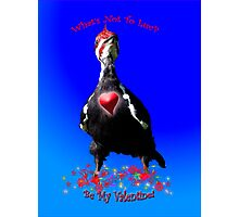 WOODPECKER Valentine's Day Gifts Photographic Print