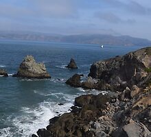 Land's End Trail San Francisco by PicsByChris