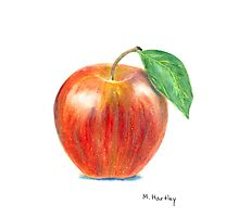 Ripe Delicious Apple Photographic Print