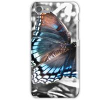 Red Spotted Purple Butterfly iPhone Case/Skin