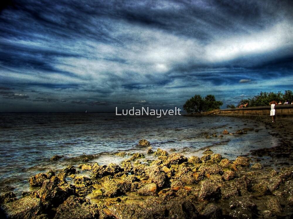 Another view of Port Charlotte beach, FL by LudaNayvelt