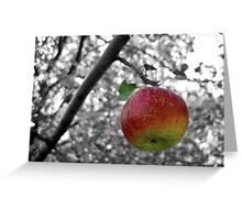 Apple A Day Greeting Card
