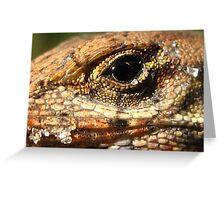 Baby Lizard Greeting Card