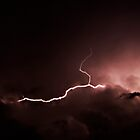Lightning by Janine  Hewlett