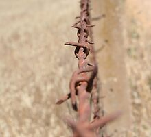 Barb Wire by JoshuaTho
