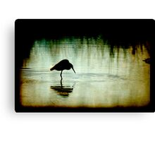 Down by the Bayou 2 Canvas Print