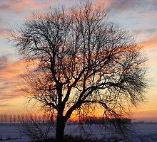 Winter-evening by Rob van Hooff