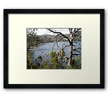 View through a tree - Eggs and Bacon Bay Framed Print