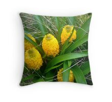 Bulbinella rossii Throw Pillow