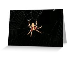Web of Fear Greeting Card