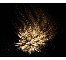 Fireworks 1 by JoshuaTho
