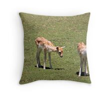 Three of Fawn Throw Pillow