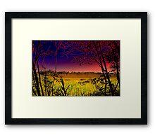 The View  / Cattus Island  Framed Print
