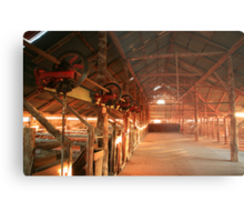 Dawn penetrates a Shearing Shed, Mungo National Park, Australia Metal Print