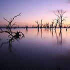 Lake Victoria Pre-Dawn, Australia by Michael Boniwell