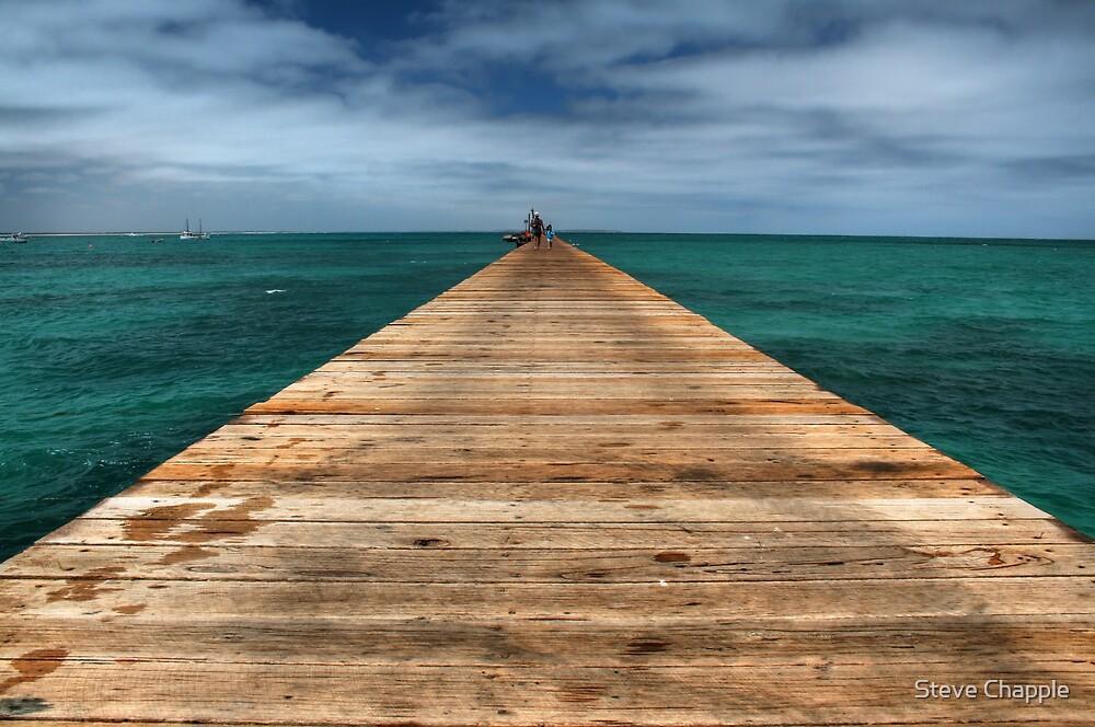 The Runway by Steve Chapple