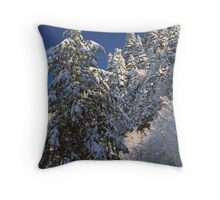WINTER TREES,GREAT SMOKY MOUNTAINS NP Throw Pillow