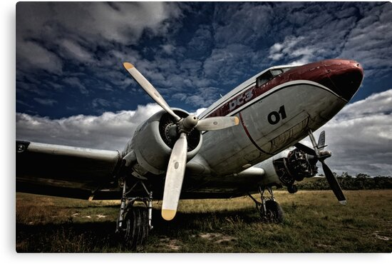The Old DC-3 by Mark Snelson