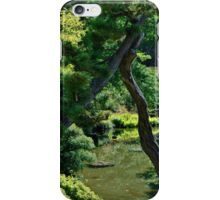 GOLDEN GATE PARK STREAM iPhone Case/Skin