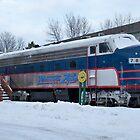 Minnesota Zephyer Train by Diane Trummer Sullivan