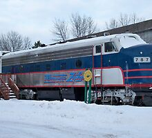 Minnesota Zephyer Train by Diane Trummer Sullivan