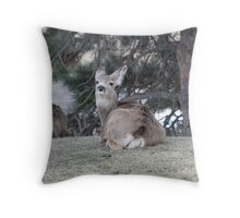 Deer Striking a Pose Throw Pillow