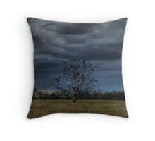 Wilber Storm 001 Throw Pillow
