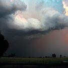 Wilber Storm 005 by pedroski