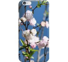 Finally, Spring iPhone Case/Skin