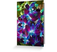 Beautiful coloured Orchids Greeting Card