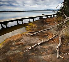 Merimbula Boardwalk by Darren Stones