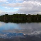 lake ainsworth blue reflection by GrowingWild
