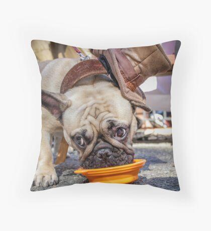 Dapper Bulldog Throw Pillow