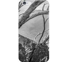 Directions of the Forest iPhone Case/Skin