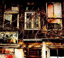 Faded Memories by Keryn Mitchell