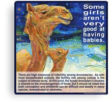 It is easier for a camel to pass through the eye of a needle than for a fertile woman to understand infertility (Dromedary) Canvas Print