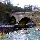 The Bridge at Gunnerside North Yorkshire by Trevor Kersley