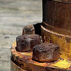 Rusty Nuts by Robert Jenner