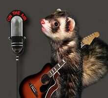 LITTLE FERRET WITH GUITAR ON THE AIR COMING TO U  LIVE ON R.B.SING LITTLE FERRET SING..PILLOW AND OR TOTE BAG ECT. by ✿✿ Bonita ✿✿ ђєℓℓσ